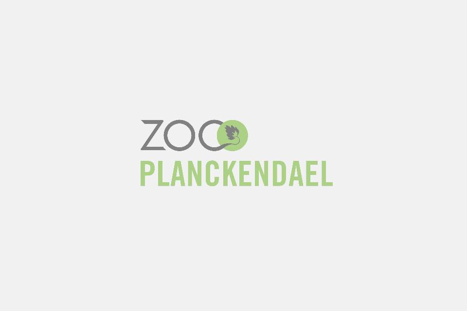 ZOO Planckendael / Jonas Verhulst