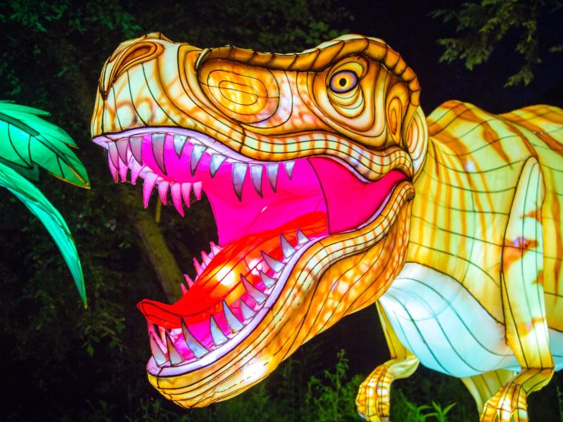 ZOO Antwerpen en ZOO Planckendael annuleren hun lichtfestivals